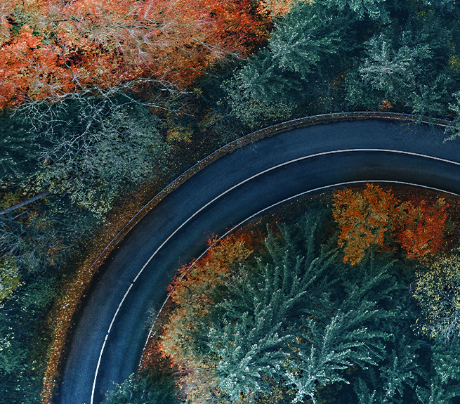Sustainability at Maxion Wheels: Road through a forest.